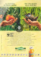Valfrutta and the WWF
