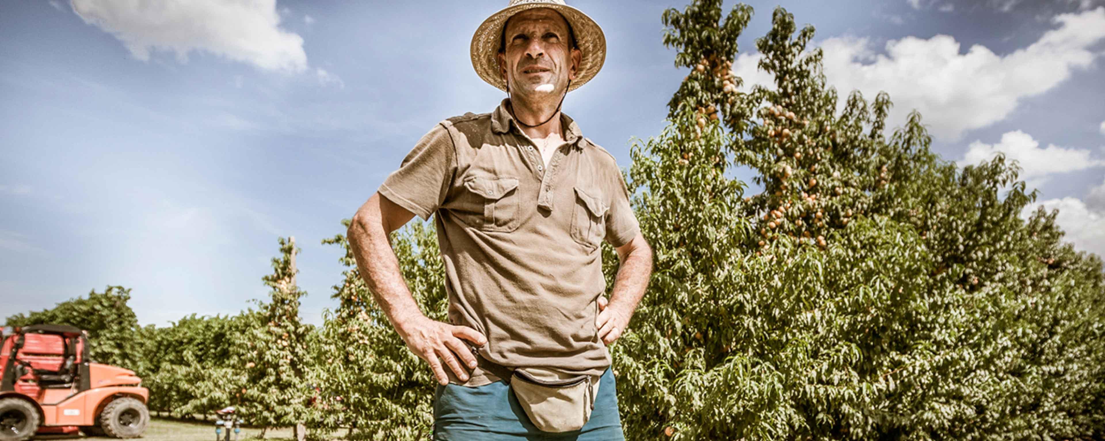 Domande e risposte coltivazione orto valfrutta for Esperto risponde