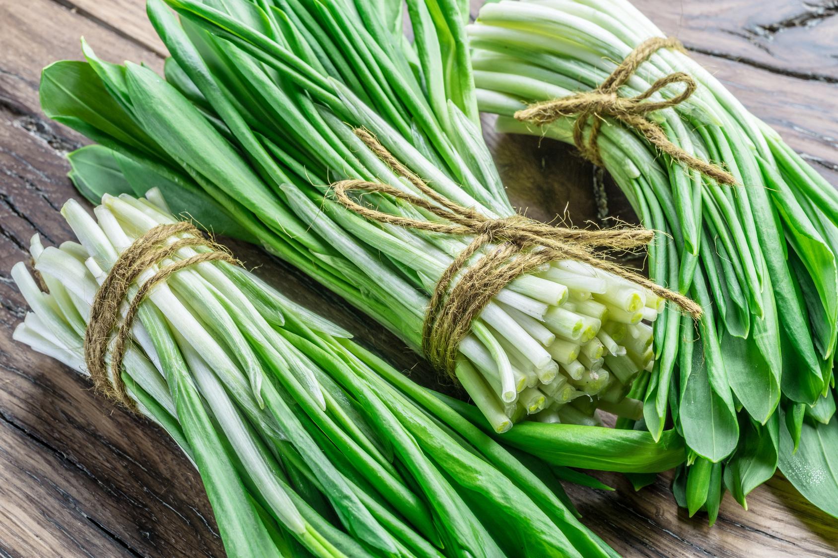 Quanto conosci l aglio orsino o aglio selvatico for Aglio pianta