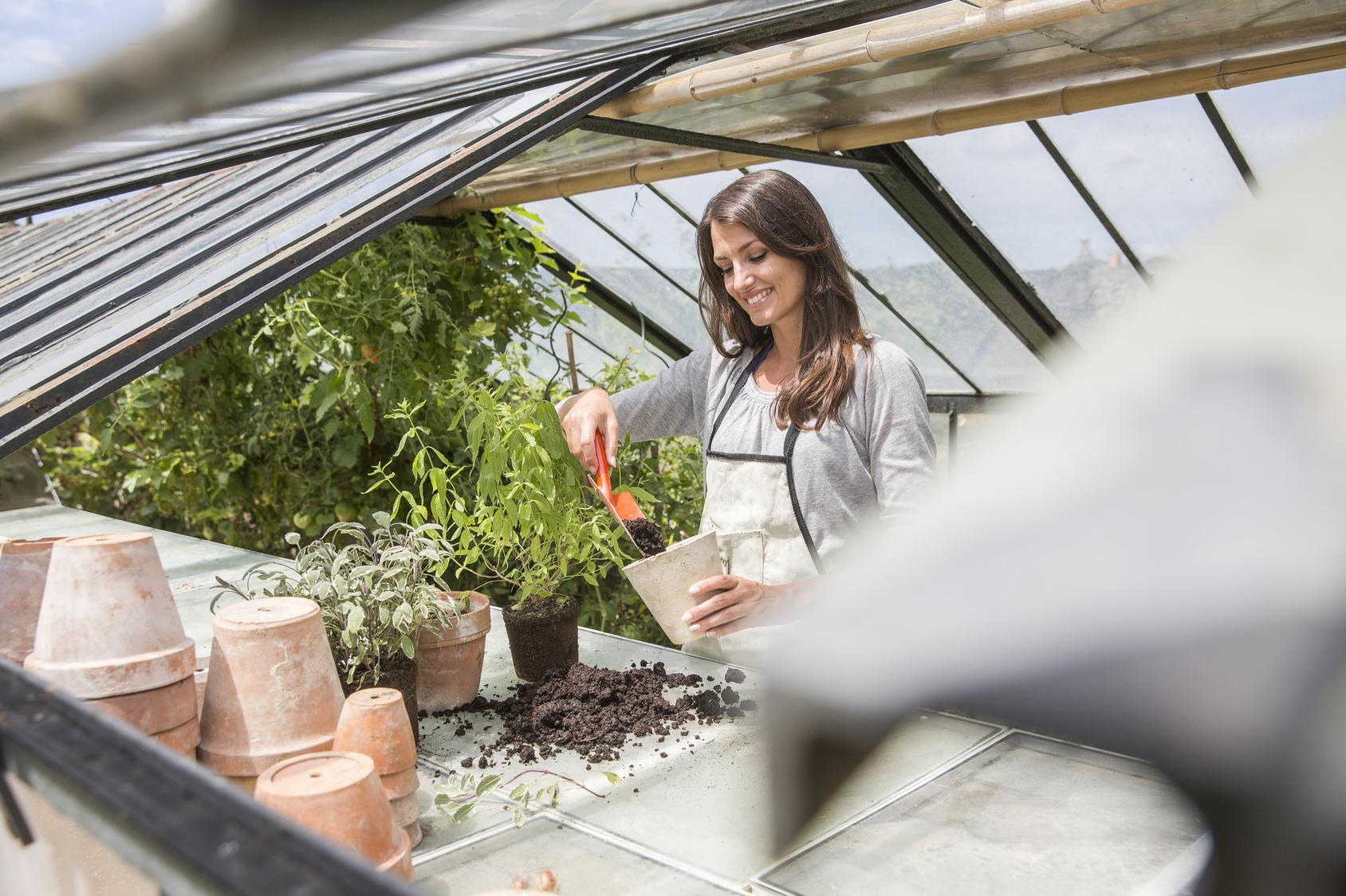 Piccole Serre Da Casa costruire una serra per l'orto: 5 consigli utili