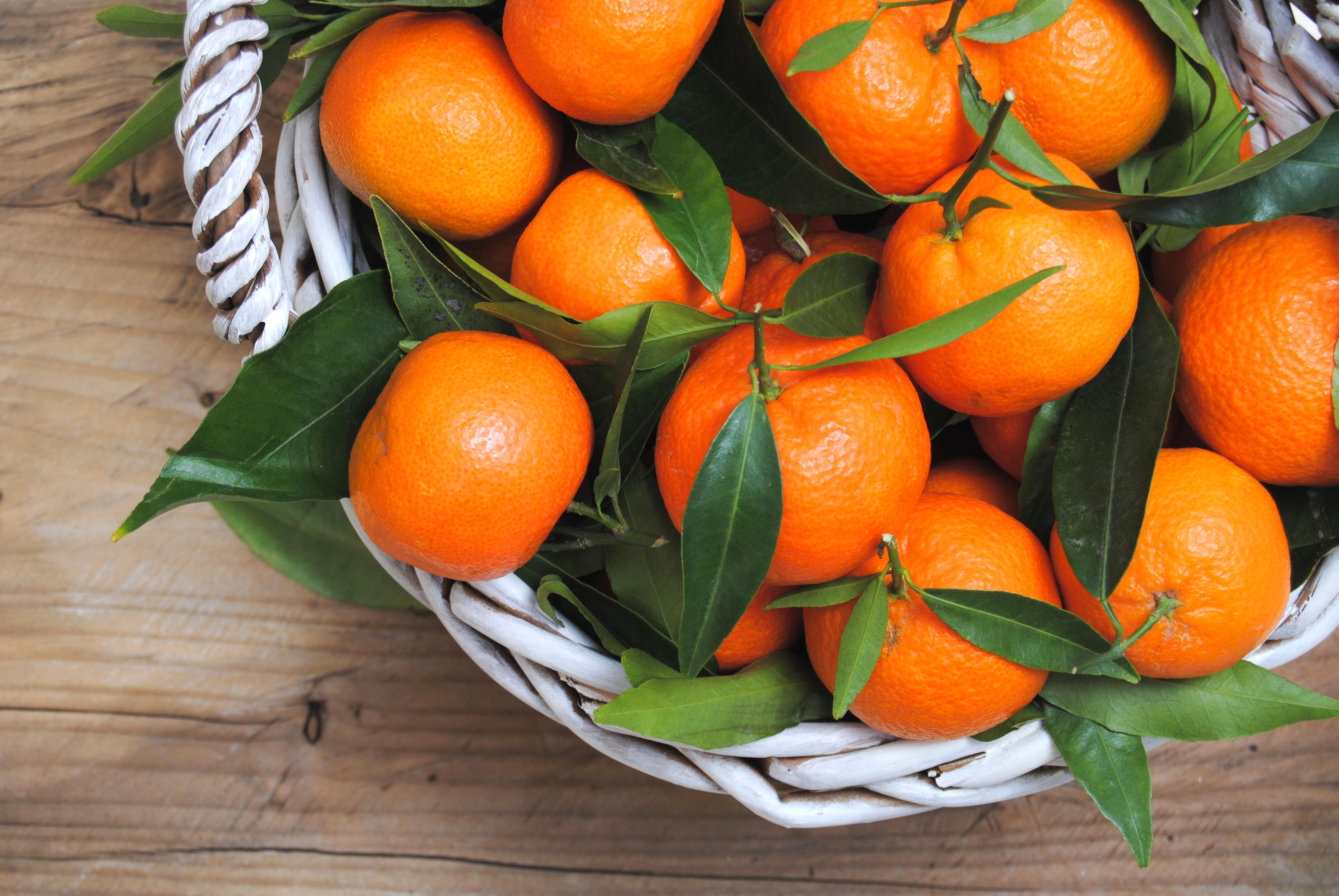 Frutta di stagione la spesa del mese di marzo - Contorno di immagini di frutta ...