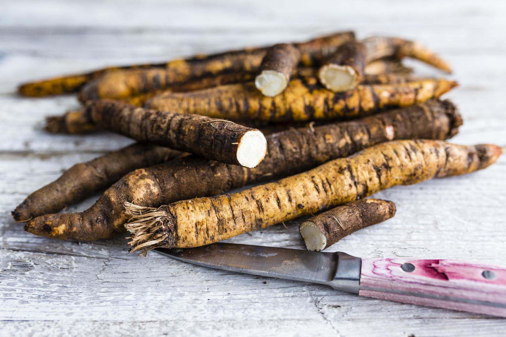 Coltivare ortaggi antichi le radici di scorzonera e di for Radici commestibili