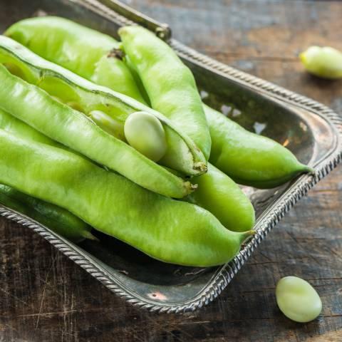 5 modi gustosi per cucinare gli asparagi selvatici - Modi per cucinare patate ...